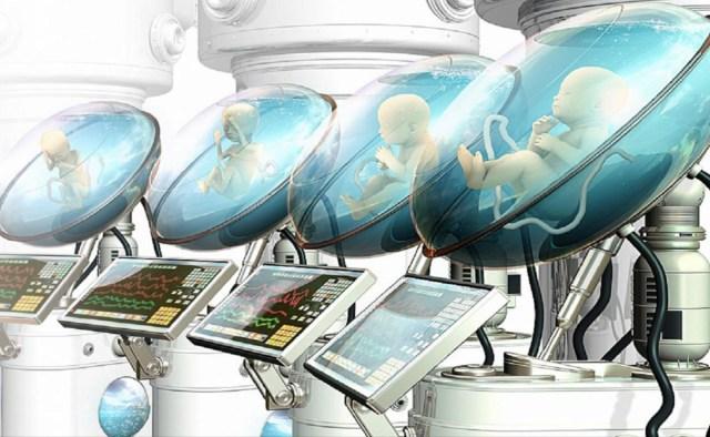 Création d'utérus artificiels : une révolution à venir d'ici 2050 ?