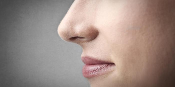 L'anosmie   : symptôme méconnu du Covid-19